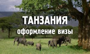 Туристам без визы в Танзании грозят проблемы