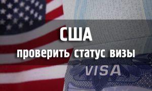 Проверка статуса визы в США: отслеживание по номеру